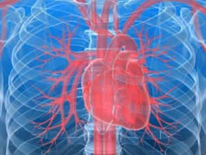 Life Insurance Approval with Angioplasty History